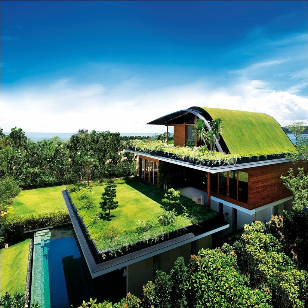 Max Disla Architect